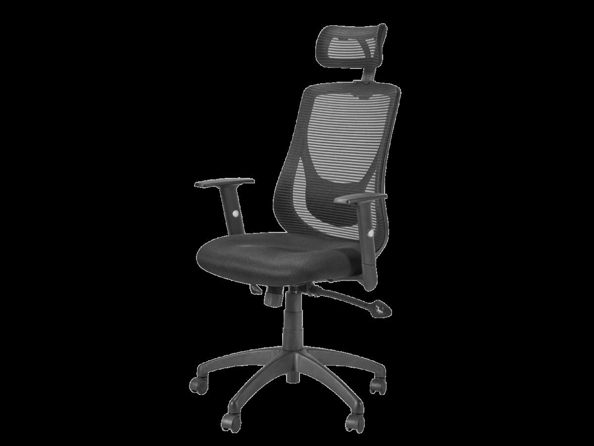 כסא מנהלים אורטופדי BACK TOUCH