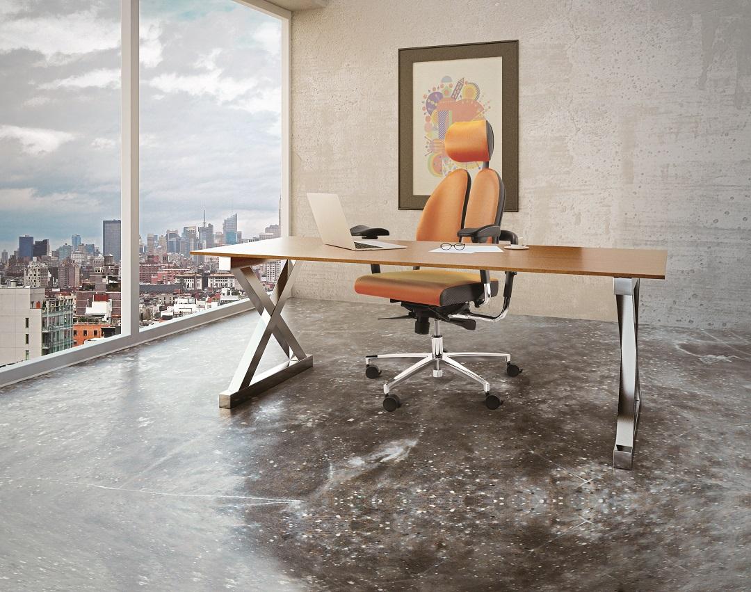 המדריך לבחירה נכונה של כיסא אורטופדי - תמונה מספר 1
